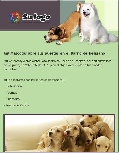 plantilla de email marketing para veterinaria y mascotas