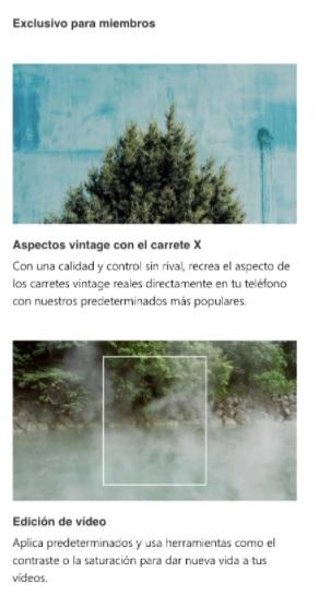Ejemplo de newsletter de VSCO